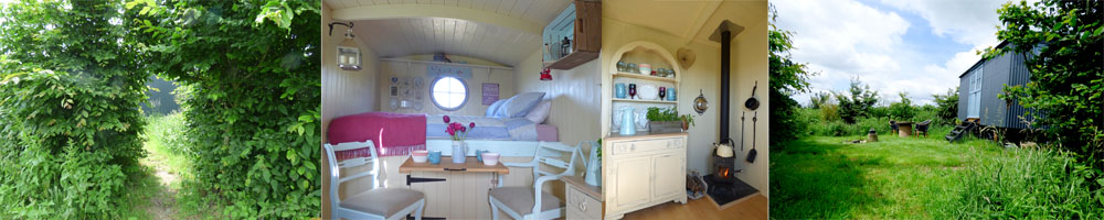 artisan shepherds hut_edited-1
