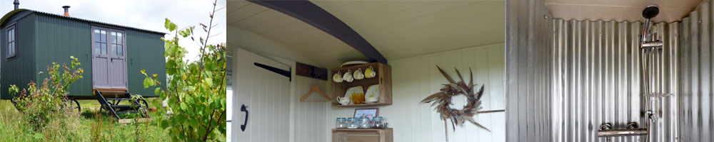 forager shepherds hut